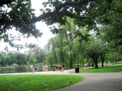 Public Gardens - Boston 2014