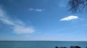 Lake 3-16-19